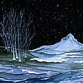 Winter Solstice by Brenda Owen