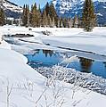 Winter Stream by D Robert Franz