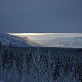Winter Sun Alaska by John Wolf