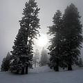 Winter Sun by Alex Lemus