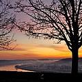 Winter Sunrise In Eden Park by Constance Sanders