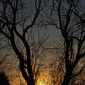 Winter Sunset by Amy Hininger