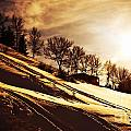Winter Sunset by Anna Om