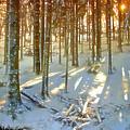 Winter Sunset by Rod Jones
