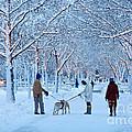 Winter Twilight Walk by Susan Cole Kelly