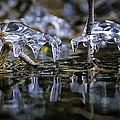 Winter Water by Paul Bartell