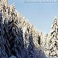 Winter Wonderland Austria Europe by Sabine Jacobs