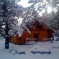 Winter Wonderland by Ken Riddle