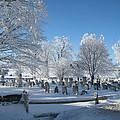 Winter Wonderland Series 7 by Wendy Butcher