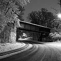 Winter's Beauty by Joel Witmeyer
