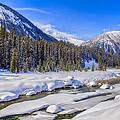 Wintery Numa Creek by David Buhler