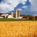 Wisconsin Farm In Fall by Jarrod Erbe