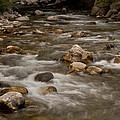 Wispy Creek by Jason Turuc