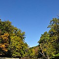 Wissahickon Blue Skies by Bill Cannon
