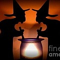 Witches Brew by Living Color Photography Lorraine Lynch