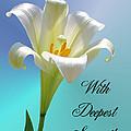 With Deepest Sympathy by Kristin Elmquist