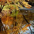 Wolcott River Reflections by LeeAnn McLaneGoetz McLaneGoetzStudioLLCcom