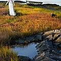 Woman By Boat On Grassy Shore by Jill Battaglia