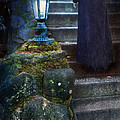 Woman In Dark Gown On Old Staircase by Jill Battaglia