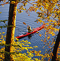 Woman Kayaking With Fall Foliage by Skip Brown