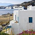 Woman On The Terrace - Mykonos by Madeline Ellis