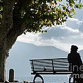 Woman Sitting On A Bench by Mats Silvan