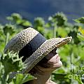 Woman With Straw Hat by Mats Silvan