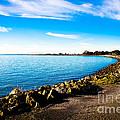 Wonders At Seaside by Brandon James