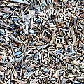 Wood Chips by Henrik Lehnerer