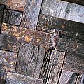 Wood by Eena Bo