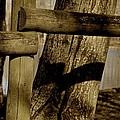 Wood by Odd Jeppesen