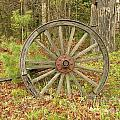 Wood Spoked Wheel by Sherman Perry