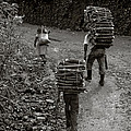 Woodcarriers In Guatemala by Day Williams