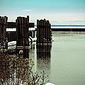 Wooden Pier Pilones  by Ms Judi