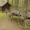 Wooden Wagon by Cindy Manero