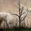 Woodland Wolf by Sharon Lisa Clarke