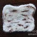 Wool Matzah by Heather Hennick