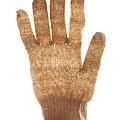 Woolen Glove by Bernard Jaubert
