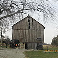 Working Barn by Tina M Wenger