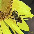 Working Bee by Ericamaxine Price