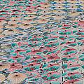 World Of Umbrellas by Trish Tritz