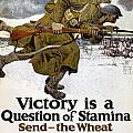 World War I: Poster, 1917 by Granger