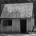 Wormsloe Cottage In Black And White by Suzanne Gaff