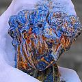 Wraped In Snow by Brian Mollenkopf