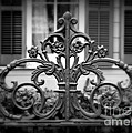 Wrought Iron Detail by Perry Webster