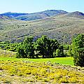 Wyoming Landscape by Lenore Senior
