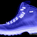 X-ray Of A Hiking Boot by Ted Kinsman