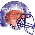X-ray Of Head In Football Helmet by Ted Kinsman