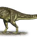 Yangchuanosaurus Shangiouensis by Sergey Krasovskiy