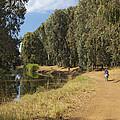 Yarkon Park  And River Yarkon by Daniel Blatt